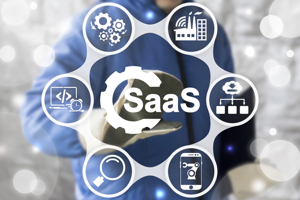 Whole Product Elaboration for SaaS:  Part 2: A SaaS Whole Product Framework
